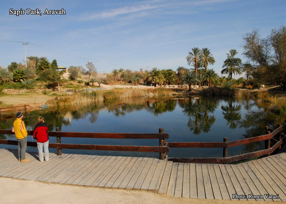 Parc Sapir Arava